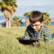 Stock Photo: Boy with laptop