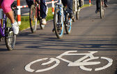 Bicycle road sign on asphalt — Stok fotoğraf