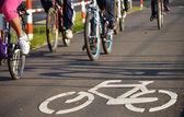 Panneau de signalisation du vélo sur l'asphalte — Photo