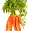 Fresh carrots bunch isolated on white background - Stock Photo