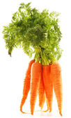Fresh carrots bunch isolated on white background — Stock Photo