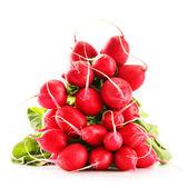 Bunch of radish isolated on white background — Stock Photo