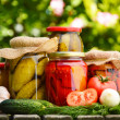 Jars of pickled vegetables in the garden. Marinated food — Stock fotografie #26896629