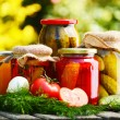 Jars of pickled vegetables in the garden. Marinated food — Stock fotografie #26896667