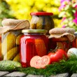 Jars of pickled vegetables in the garden. Marinated food — Zdjęcie stockowe