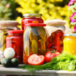 Jars of pickled vegetables in the garden. Marinated food — Stockfoto #26896783