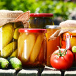 Jars of pickled vegetables in the garden. Marinated food — Stock fotografie #26896849