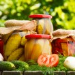 Jars of pickled vegetables in the garden. Marinated food — Stock fotografie