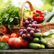 Fresh organic vegetables in wicker basket in garden — Stock Photo #27322811