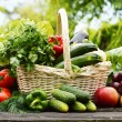 Fresh organic vegetables in wicker basket in the garden — Stock Photo