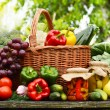 Fresh organic vegetables in wicker basket in the garden — Stock Photo #27323563