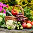Fresh organic vegetables in wicker basket in the garden — Stock Photo #27323773
