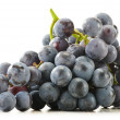 Bunch of fresh red grapes isolated on white — Stock Photo