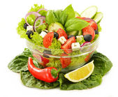 Vegetable salad bowl isolated on white — Stock Photo
