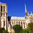 Notre-Dame Cathedral in Paris, France — Stock Photo