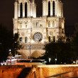Notre-Dame Cathedral in Paris, France by night — Stock Photo