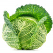 Fresh cabbage isolated on white background — Foto de Stock