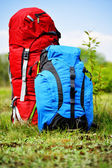 Two touristic backpacks on the meadow — Stok fotoğraf