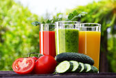 Glasses with fresh vegetable juices in the garden. Detox diet — Stock Photo