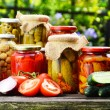 Jars of pickled vegetables in the garden. Marinated food — Stock Photo #50010227