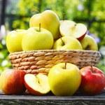 Organic apples in the garden. Balanced diet — Stock Photo #50353759