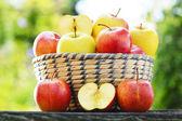 Organic apples in the garden. Balanced diet — Stock Photo