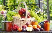 新鲜成熟的有机水果在花园里。均衡的饮食 — 图库照片