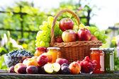 Fresh ripe organic fruits in the garden. Balanced diet — Stock Photo