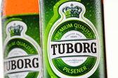 Bottles of Tuborg beer — Stock Photo