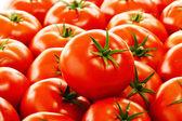Tomates frescos orgánicos en puesto callejero — Foto de Stock