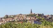 Briones village, La Rioja, Spain — ストック写真