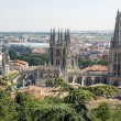 Panoramic view of Burgos — Stock Photo