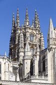 Catedral de burgos bóveda gótica — Foto de Stock