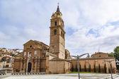 Rioja de la catedral de calahorra — Foto de Stock