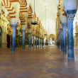 The Great Mosque of Cordoba — Stock Photo #36593513