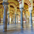The Great Mosque of Cordoba — Stock Photo