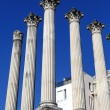Cordoba Roman temple — Stock Photo
