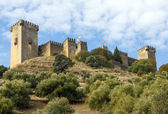 Almodovar del Rio, Cordoba Spain — Stock Photo