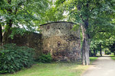 Antiche rovine romane delle pareti, treviri — Foto Stock