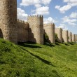 Scenic medieval city walls of Avila — Stock Photo #45167659