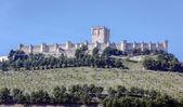 замок пенафиел, вальядолид, испания — Стоковое фото