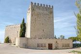 Zamek monzón de campos — Zdjęcie stockowe