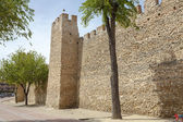 Olmedo walls — Stock Photo