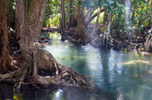 Landscape of Tapom two water canal in krabi, thailand — Stock Photo