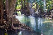 Paesaggio del canale di acqua tapom due a krabi, thailandia — Foto Stock