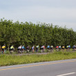 Mountain Bike racing competition in Yala — Stock Photo