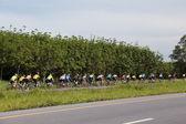 Mountainbike racing competizione in yala — Foto Stock