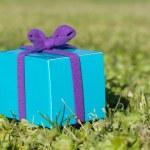 Giftbox — Stock Photo #5406654