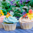 Stock Photo: Many cupcakes