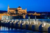 Mezquita and roman bridge — Stock Photo